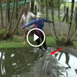 Australiano usa manequim para mostrar o poder de ataque do crocodilo