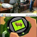 Segura esse gado ai