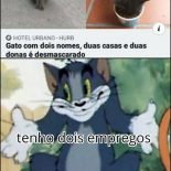 Eis o gato do Julius